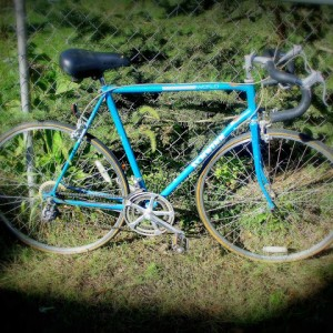 Blue '69 Schwinn World Soft Focus Vignette #1