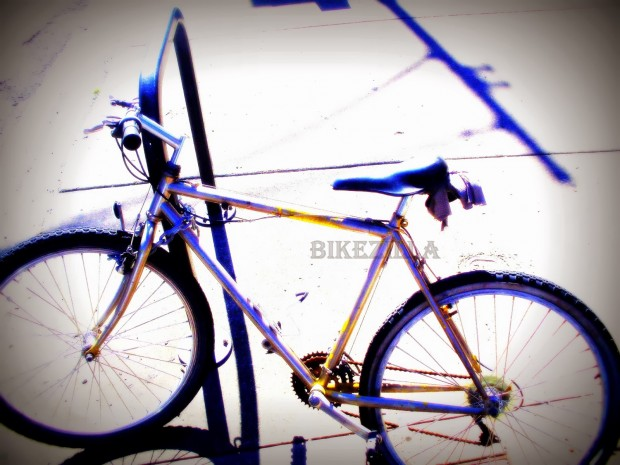 WM Bum Bike Saturation Orton Lomo #1
