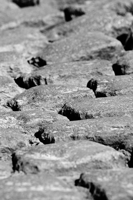 Paris-Roubaix pav (photo courtesy Jered Gruber)